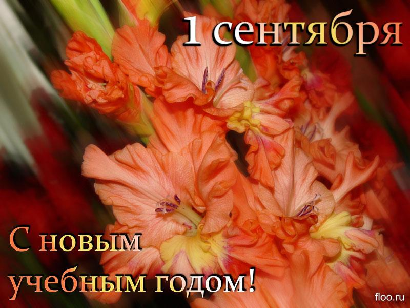 Поздравление учителей с 1 сентября картинки